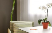 Chambre Simple - Confort